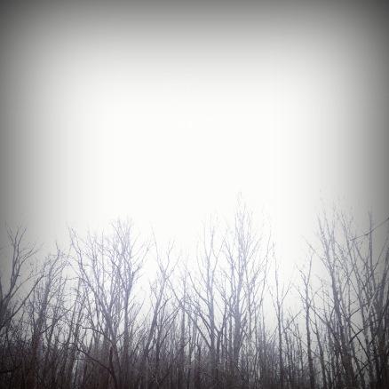 photo-47