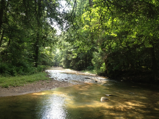 Otter Creek Susquehanna