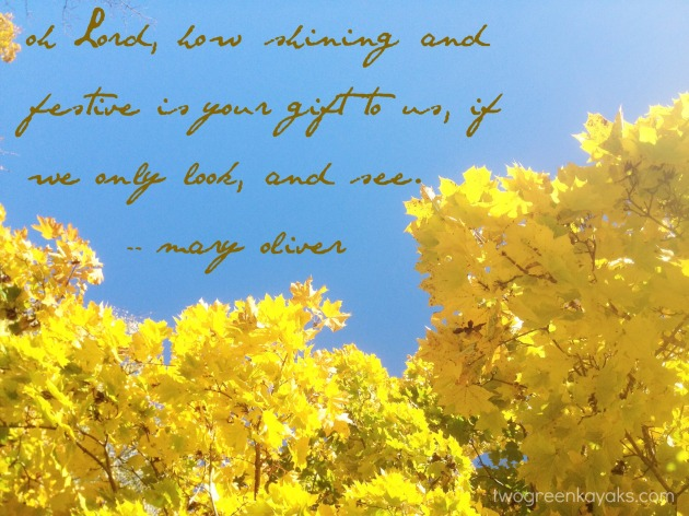 fall mary oliver and leaves